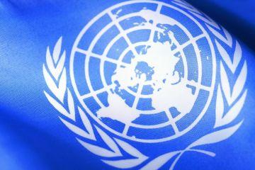Боливия Швеция и Эфиопия попали в СБ ООН