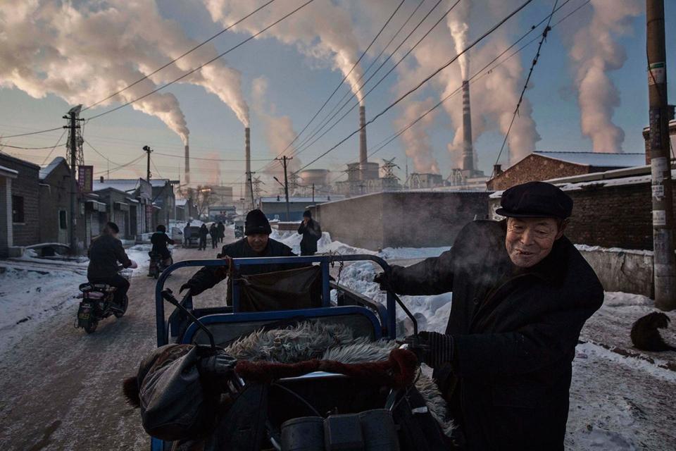 Фотографії року за версією World Press Photo