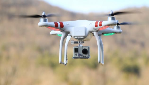 Нідерландська поліція навчає орлів ловити дрони