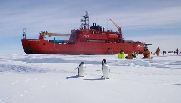 В Антарктиді виявили величезну тріщину