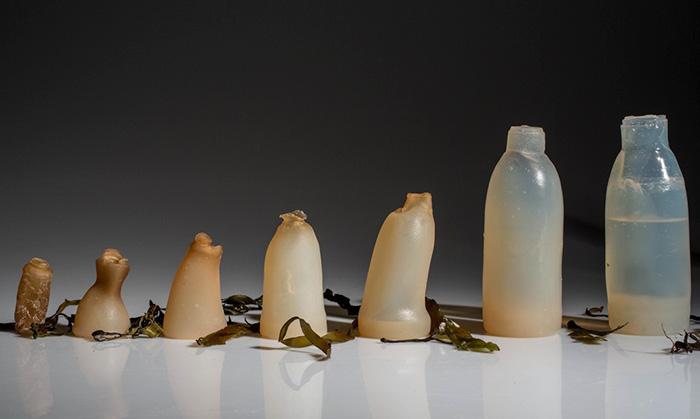 Дизайнер з Ісландії представив альтернативу пластиковим пляшкам
