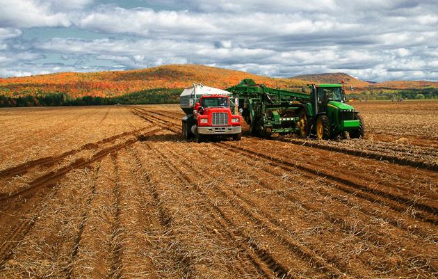 Фото: rurallivingcanada.blogspot.com