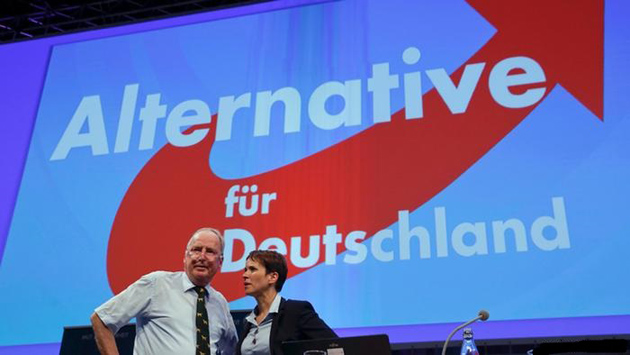 Альтернатива для Німеччини / Фото: ursa-tm.ru