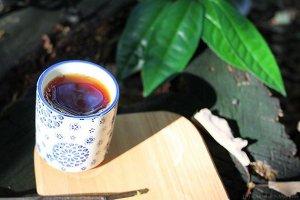 Український чай живе на Закарпатті