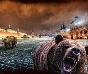 Про вкрай неприємний сморід Росії