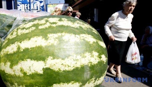На херсонський фестиваль привезли 35-кілограмовий кавун