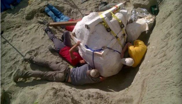 У Штатах знайшли неушкоджений череп тиранозавра