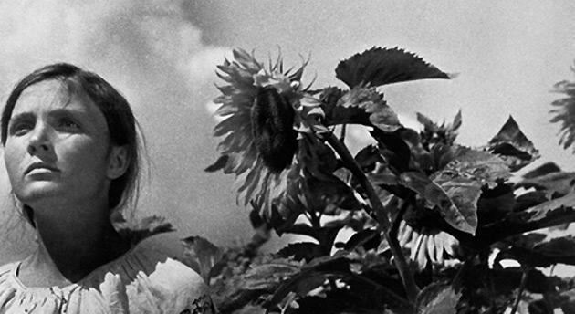 Плоди довженкового саду. День кіно без орденів, але з надією