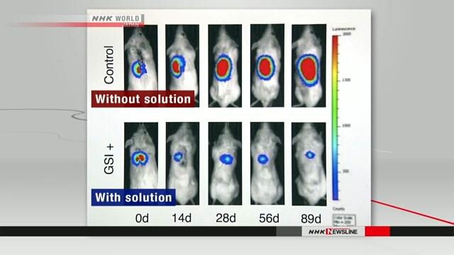 """Вчені змогли """"переконати"""" стовбурові клітини не ставати раковими"""