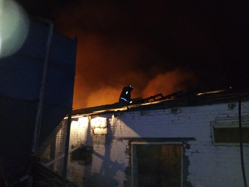 При пожаре наферме сгорели 7 тыс. кур