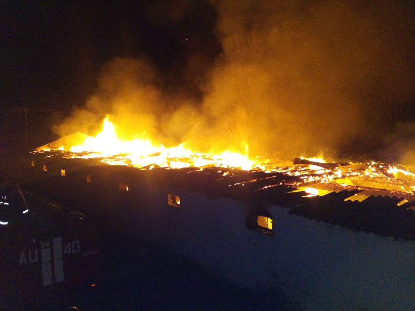 Пожарные спасли практически 10 тыс кур вКиевской области— ГСЧС