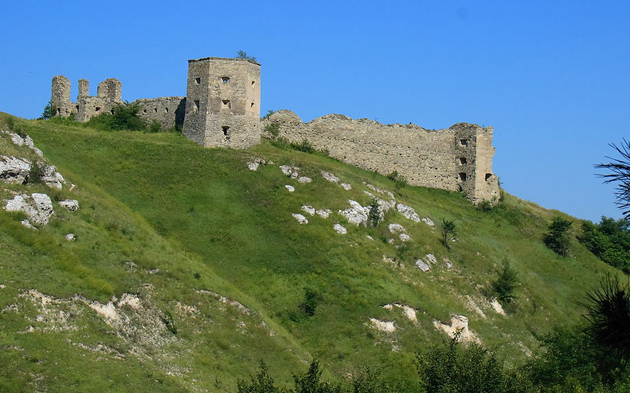 Кудринецький замок — фортифікаційна споруда у селі Кудринці Борщівського району Тернопільської області.