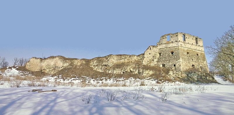 Токівський замок (Ожиговецький замок) — пам'ятка архітектури місцевого значення, оборонна споруда у селі Токи Підволочиського району Тернопільської області.
