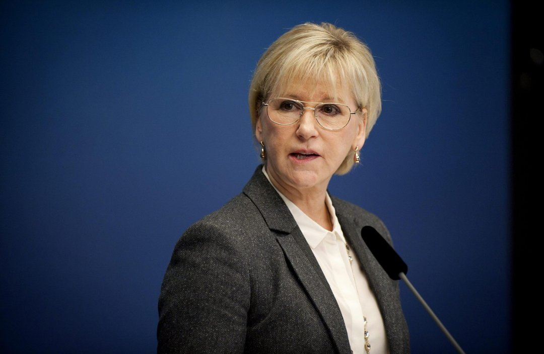 Swedish foreign minister urges Ukraine to improve legislation on e-declaration