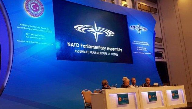 Україна передала в ПА НАТО інформацію про зв'язки Росії з терористами