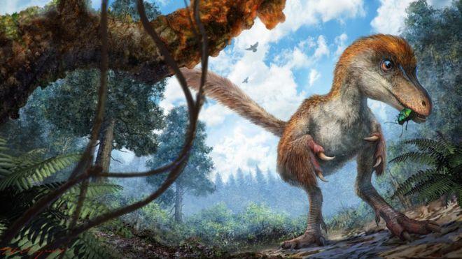Палеонтологи обнаружили останки обитавшего 100 млн.лет назад динозавра вкуске янтаря