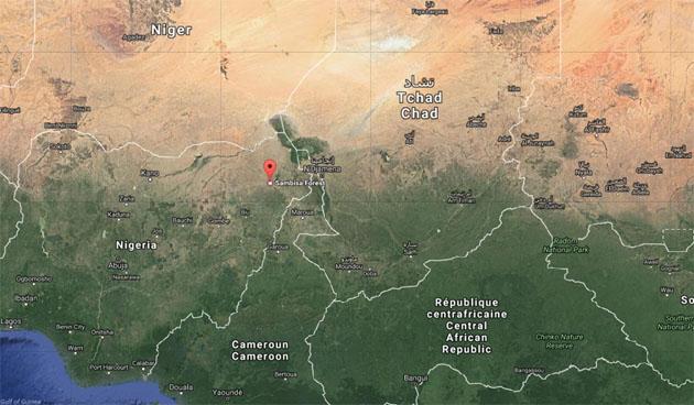 ВНигерии захвачен основной лагерь боевиков «Боко Харам»