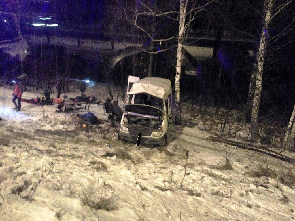 ДТП наЖитомирщине: микроавтобус спассажирами вылетел вкювет, есть жертвы