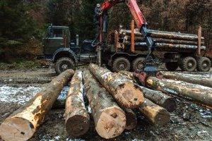 Мораторий на вывоз леса: скорее политика, чем экономика