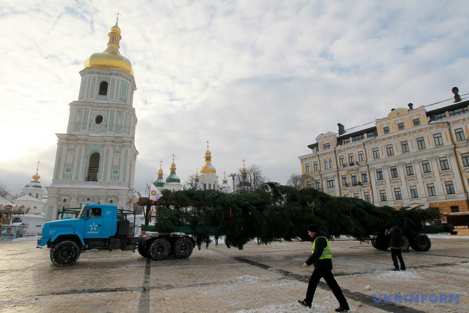 На Софійську площу привезли ялинку з прикарпатського лісу  / Фото: Павло Багмут, Укрінформ.
