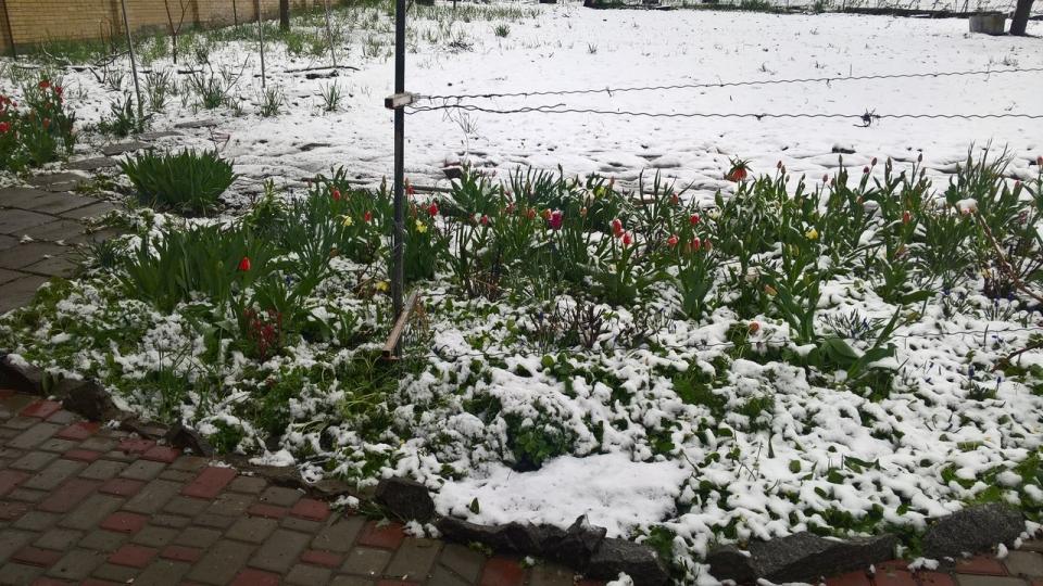 ВХарькове сегодня прогнозируется до10см снега