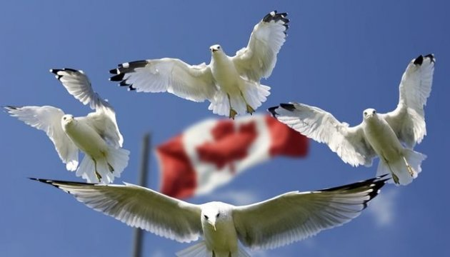 Ukrainian Canadian Congress urges to punish those responsible for MH17 tragedy