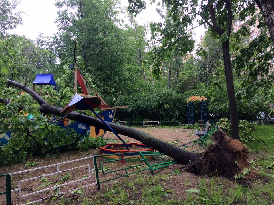 Собянин проинформировал о40 пострадавших в итоге урагана