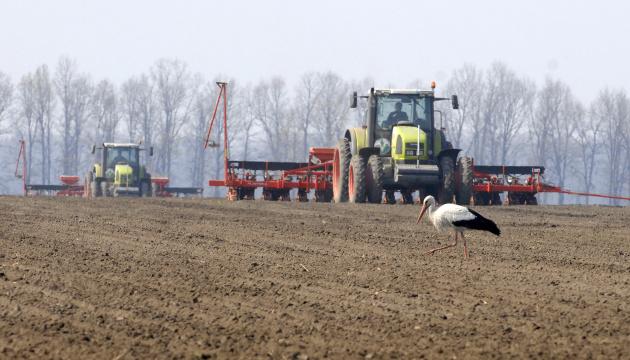 На Хмельниччині завершили сівбу ранніх зернових