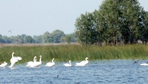 Водні ресурси України торік постраждали на 188 мільйонів – Держекоінспекція