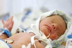 В Украине смертность превышает рождаемость почти вдвое - Госстат