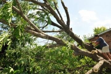 238 localidades en Ucrania permanecen sin electricidad