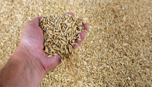 Ukrainian Grain Association downgrades forecast for this year's harvest to 95.6 MT