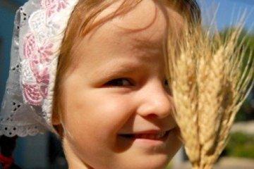 Ukrainian farmers already gathered over 41 mln tonnes of main crops