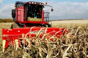 Ukraine already harvested 62.5M tonnes of grain and leguminous crops
