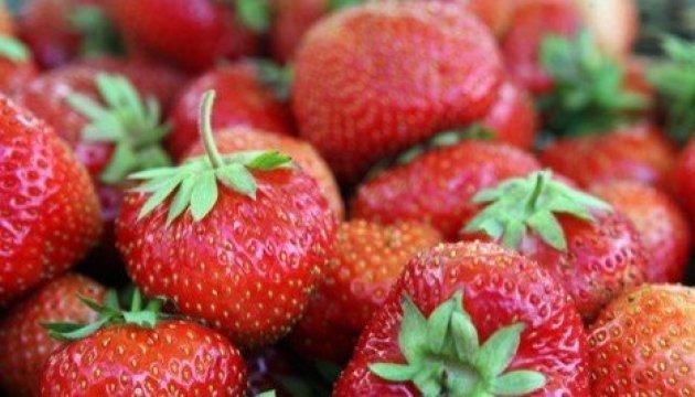 UFEB:东欧25%的浆果来自乌克兰