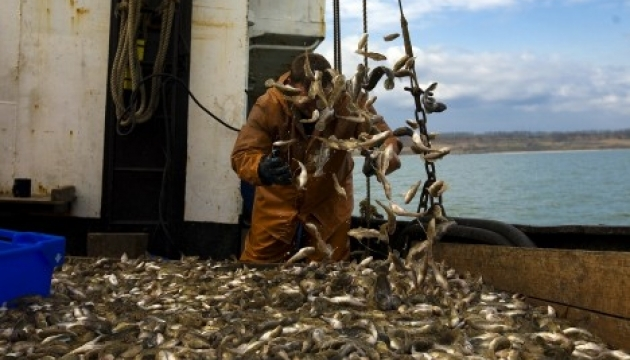 Ukraine-Turkey cooperation in fisheries sector gaining pace