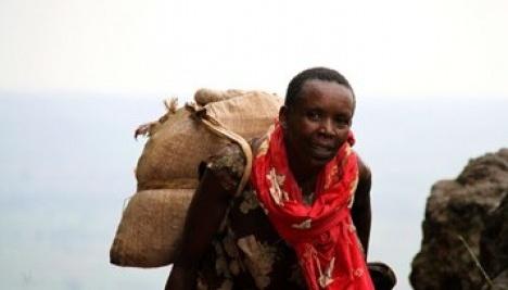 OIT : Plus de 4 milliards de personnes dans le monde ne bénéficient toujours d'aucune protection sociale
