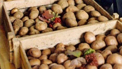 Ministerio de Política Agraria: China planea invertir en el procesamiento industrial de patatas en Ucrania