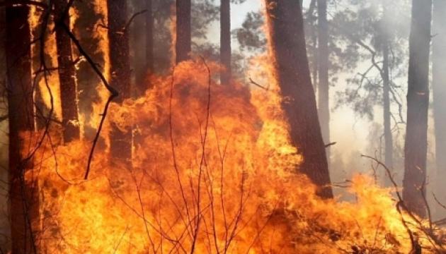 Fire hazard remains high in some regions of Ukraine