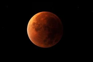 Израиль отправит на Луну свою первую космическую миссию на ракете SpaceX