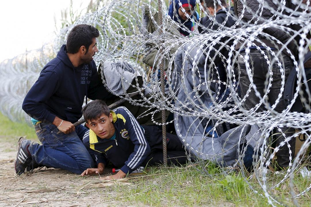 Мигранты пытаются перейти границу фото: ibtimes.co.uk