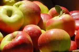 Україна вшестеро збільшила імпорт яблук