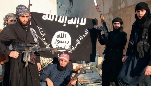 В Германии задержаны подозреваемые в связях с террористами