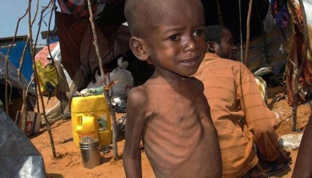 Німеччина виділить Африці ще 16,5 млн євро гуманітарної допомоги