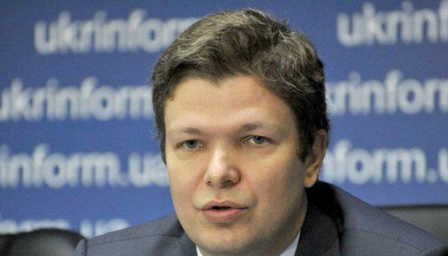Рада может принять закон об антикоррупционном суде до августа – Емец