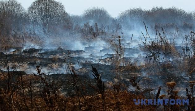 На Черниговщине продолжают гореть более 12 гектаров торфяников