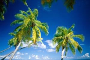 Мальдивы открылись для иностранных туристов