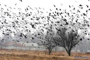 В Україні різко погіршиться погода - оголосили штормове попередження