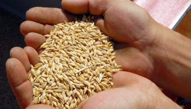 Ukraine already exported over 30 mln tonnes of grains