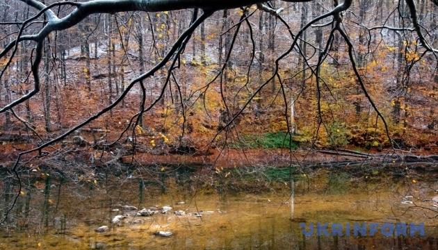 В понедельник дожди обойдут Киев